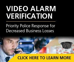 Video Alarm Verification